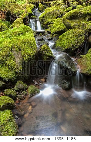 Small falls through moss covered rocks along the Sol Duc Falls trail in Washington.