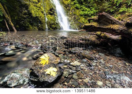 The scenic Madison Falls near the Ehwa River in Washington state.