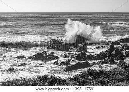 Black-and-White image of ocean waves crashing against rocks on California shore