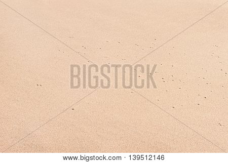 Texture of white sand beach in day noon light