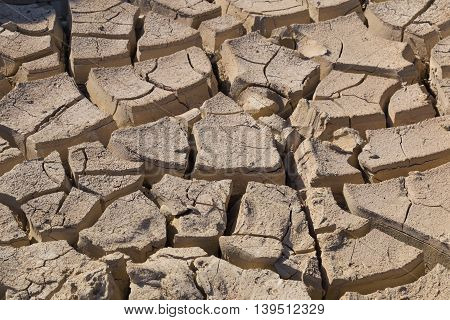 Gray cracked ground closeup. surface of dried earth for textured background. soil detail