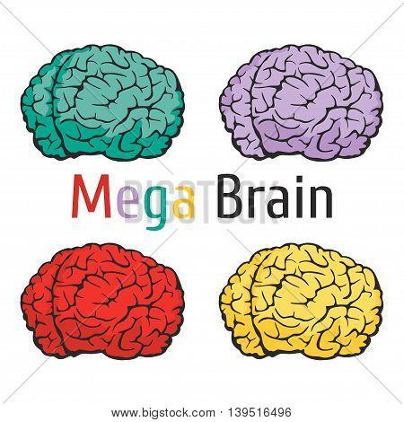 I51 - Brain Science Education-01.eps