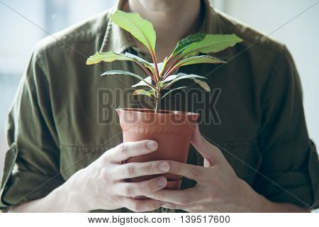 man keep a pot with plant. ecological concept