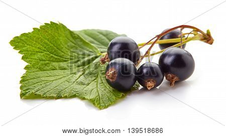 Ripe Blackcurrant Isolated On White