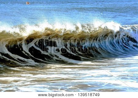 A wave forms into a nice curl off the coast of Long Island