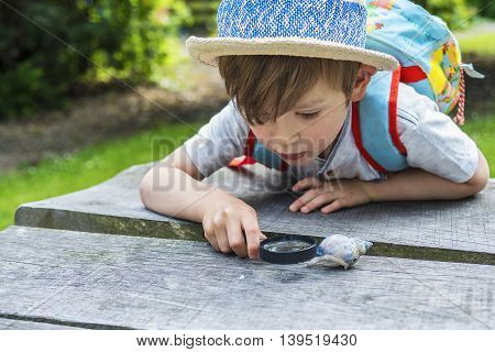 Little discovering nature through a magnifying glass