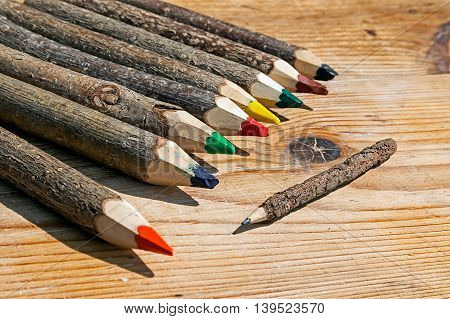 Colored pencils made from branches of trees and placed on a wooden table.