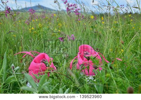 Pink sneakers in green grass and wildflowers on a mountain meadow with hills in distance