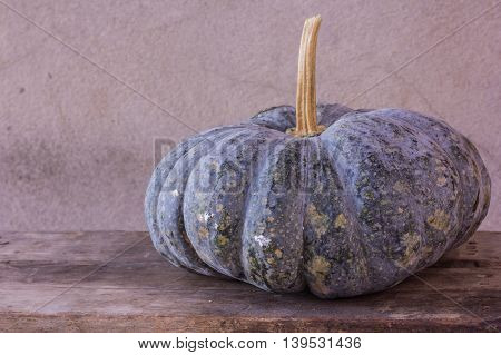 Art Photo pumpkin still life , vegetable