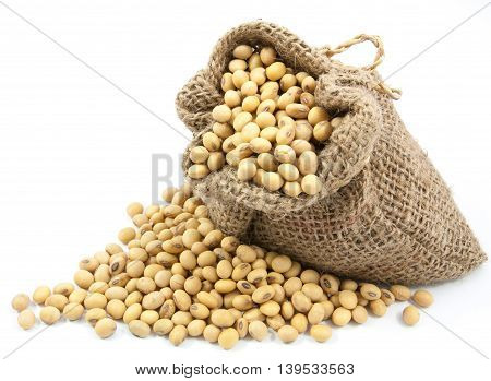 Dried Soybean In Canvas Sack
