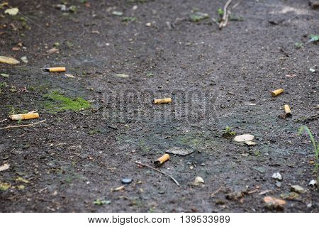 A cigarette/trash on the ground. Dirty environment.