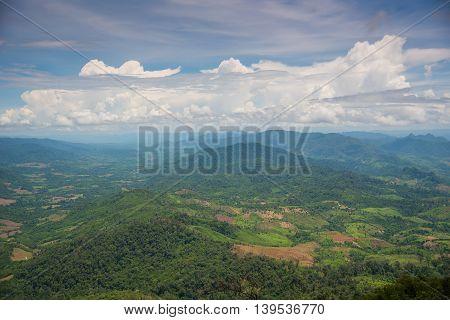 Forest encroachment to plant corn Tak ,Thailand.