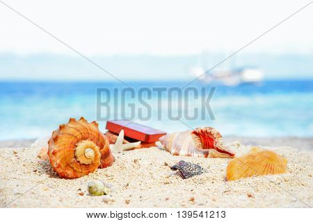 Various beautifull seashells starfish and chest against the tropical blue sea at sunny day