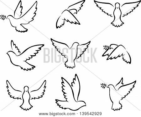 collection of Dove birds logo for peace concept and wedding design