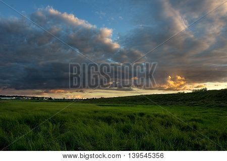 Grass on the field. Sunset and clouds. Agricultural landscape in the summer time