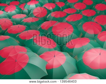Umbrellas With Flag Of Bangladesh