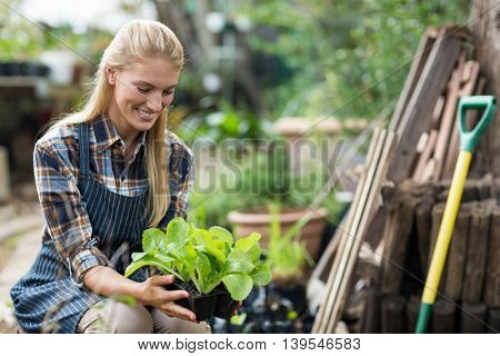 Smiling female gardener holding potted plant while crouching outside greenhouse