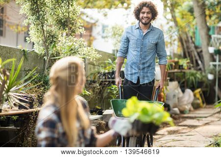 Male gardener working while female coworker holding plants in foreground