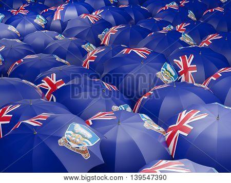 Umbrellas With Flag Of Falkland Islands