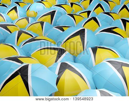 Umbrellas With Flag Of Saint Lucia