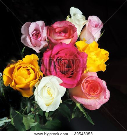 Bouquet of multi colored roses, isolated on black