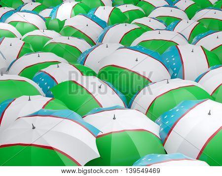 Umbrellas With Flag Of Uzbekistan