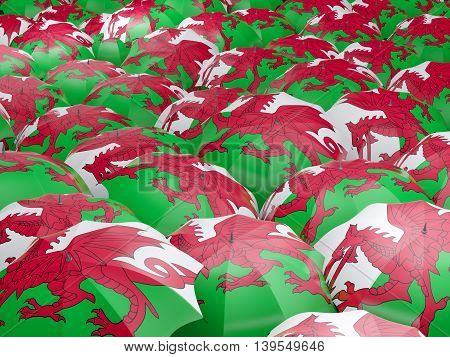 Umbrellas With Flag Of Wales