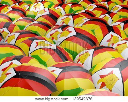 Umbrellas With Flag Of Zimbabwe