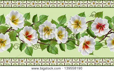 Horizontal floral border. Pattern seamless. Flower garland of white primroses.