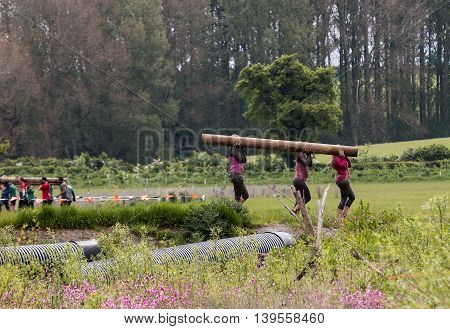 Grantham Leicestershire/UK - May 21, 2016: Three articipants do the work of six putting their lumberjack skills to the test in the Hold Your Wood obstacle during the 2016 Tough Mudder extreme sports charity competition at Belvoir Castle.