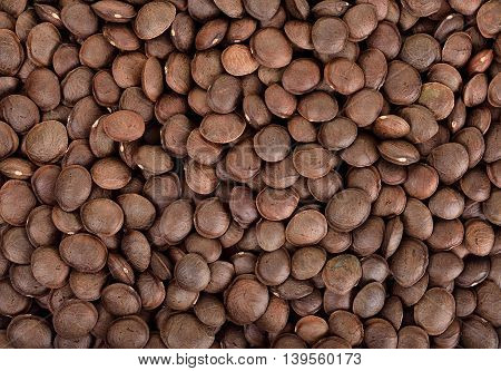 Sacha Inchi Peanut Seed Background Texture