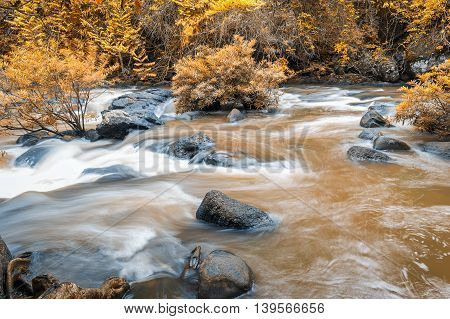 Motion blur of flowing mud river in autumn forest moving through rocks. It came from big waterfall inside the jungle.