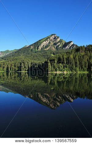 Summer scene in the Swiss Alps. Mountain and fir forest reflecting in lake Obersee Glarus Canton.