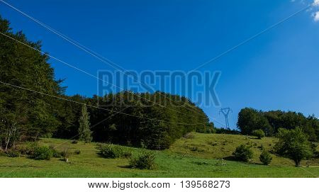 Green field with power line above it