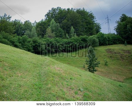Beautiful green hill with trees at edges