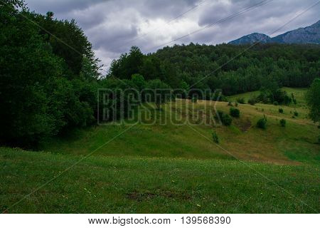 Green hills with trees on edges with clouds above