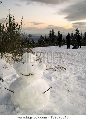 A snowman having a smoke behind a tree