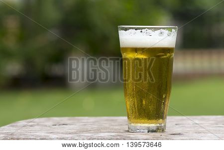 Glass of beer isolated on a green background