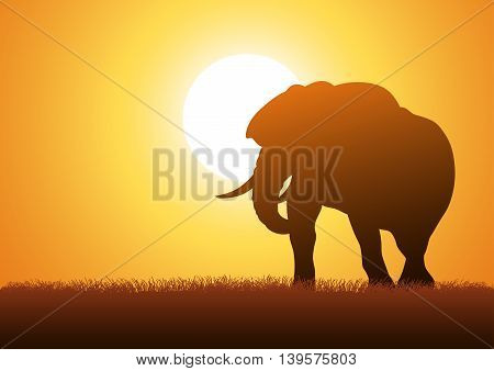 Silhouette illustration of an elephant against sunset background