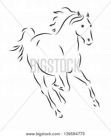 Vector illustration - sketch of running fast horse