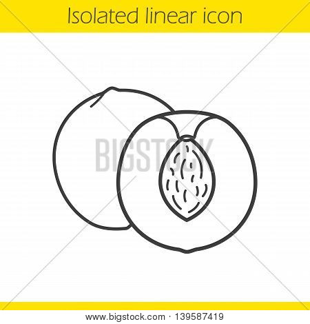 Apricot linear icon. Halved peach thin line illustration. Cutted nectarine contour symbol. Vector isolated outline drawing