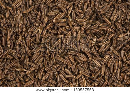 Cumin seeds or caraway, top view, close-up