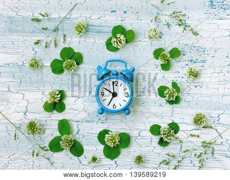 Blue retro alarm clock surrounded clover flowers on rustic wooden table
