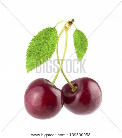 Two sweet cherry isolated on white background