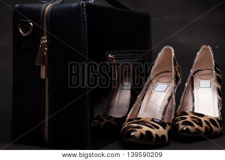 Pair Of Women Shoes And Handbag On Black Background,animal Skins.