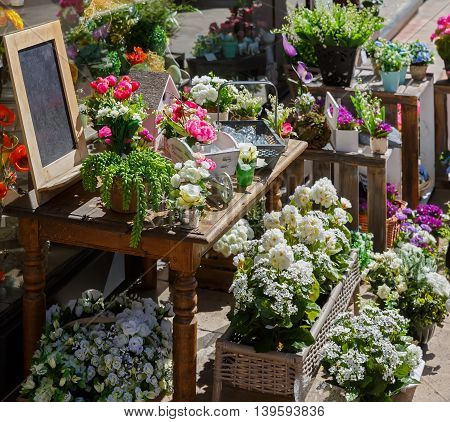 The flowers are sold from a tray on the street. France Europe