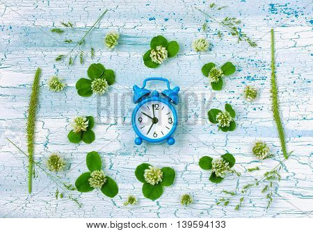 Blue retro alarm clock clover flowers plantain on rustic wooden table top view