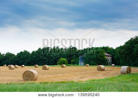 Italian Countryside Panorama. Round Bales On Wheat Field