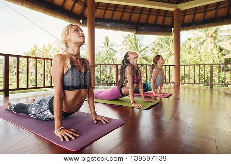 Women Doing Cobra Pose At Yoga Class