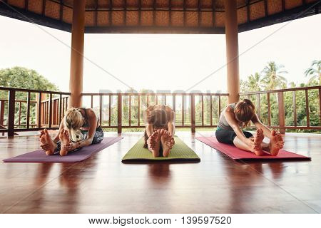Three Women Practicing Paschimottanasana Pose At Yoga Class